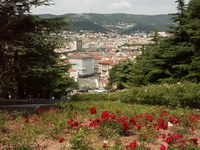 Вид на город Триест