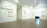 После всего (выставка Л. Вейнера, 2007 г.)